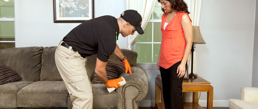 Appleton, WI carpet upholstery cleaning