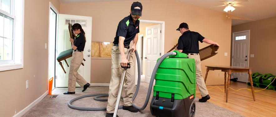 Appleton, WI cleaning services